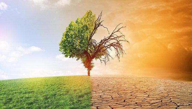 Ученые предсказали наступление «смертоносной жары» вСША