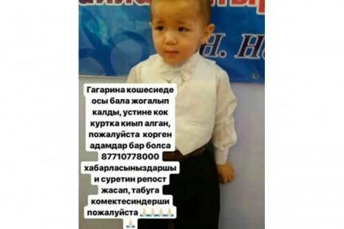 Двухлетний мальчик пропал на тое в Шымкенте