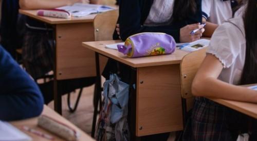 В казахстанских школах может появиться новая должность