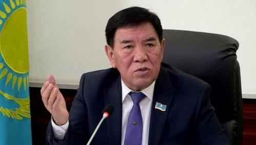 Депутаты ЮКО высказали свое мнение о ситуации с «насилием» над ребенком в поселке Абай