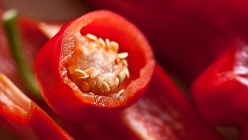 Врачи рассказали, что будет, если съесть самый острый перец в мире