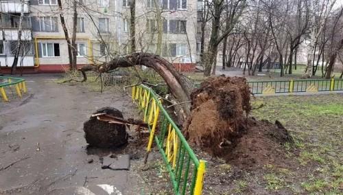 Ураган в Москве: есть пострадавшие (фото, видео)
