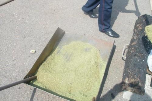 Россиянин задержан с наркотиками на границе с Казахстаном