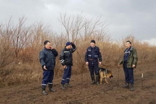 Тело пропавшей 77-летней женщины нашли в лесу в Акмолинской области