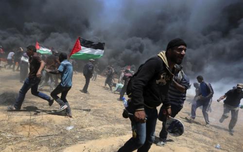 Число погибших в секторе Газа палестинцев возросло до 59