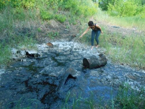 Смертельную ловушку из мазута обнаружили экологи в Усть-Каменогорске