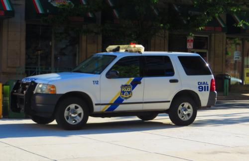 В американском Питтсбурге полицейские застрелили убегавшего от них подростка