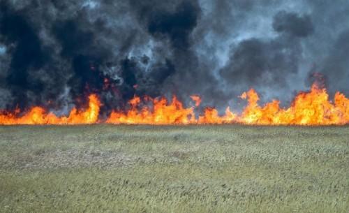 От тракторной искры в ВКО загорелись степь и 4 тонны сена