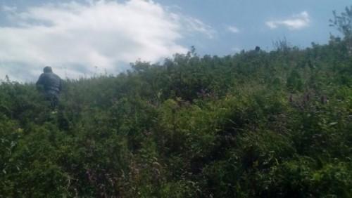 В ДВД сообщили о чабане, возможно, причастном к пропаже 7-летнего мальчика