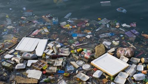 Ученые сообщили о вреде наночастиц в составе пластика для Мирового океана