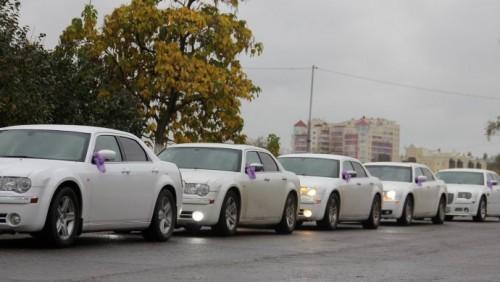 Полиция Алматы оштрафовала водителей очередного свадебного кортежа
