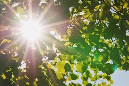 Погоду без осадков и потепление обещают синоптики в ближайшие 2 дня