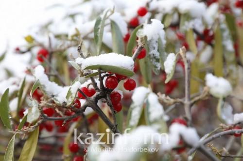 Снегопад ожидается в Казахстане 18-20 октября