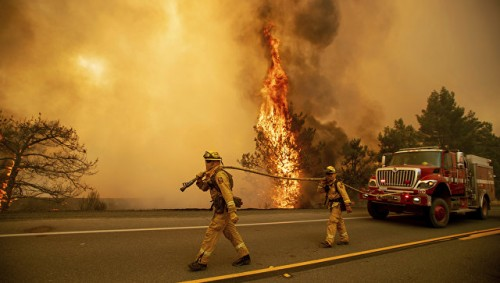 Город Парадайс в Калифорнии уничтожен лесным пожаром, пишут СМИ