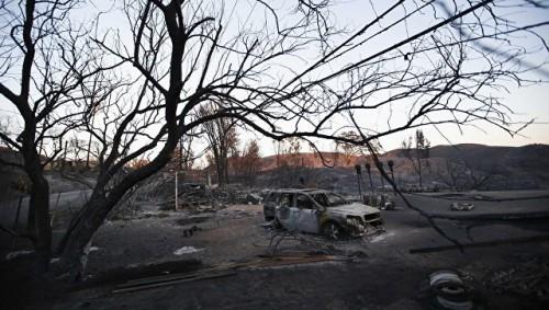 Число жертв лесного пожара в Калифорнии увеличилось до 48 человек