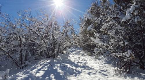 Снег и потепление ждут казахстанцев
