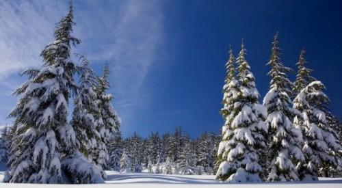 До 30 градусов мороза ожидается в Казахстане в начале декабря