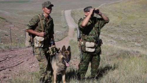 Новые подробности рассказали в Погранслужбе о задержании контрабандистов