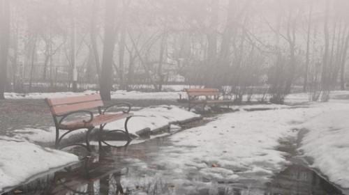 Туман, усиление ветра, гололёд: прогноз погоды на 14 декабря
