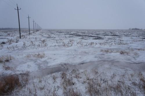 В Атырауской области мать бросила застрявших в грязи детей в степи