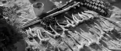 У участкового в Карагандинской области нашли 30 туш и пар рогов сайги