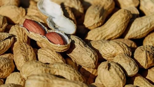 """Учёные нашли способ """"выключить"""" пищевую аллергию"""