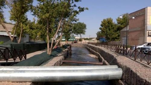 В Шымкенте по факту гибели рыбы на Кошкарате заведено уголовное дело