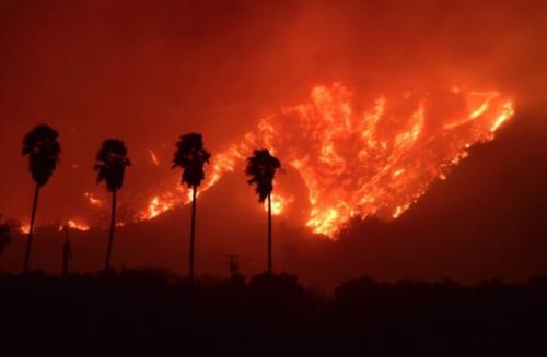Назван виновник самого смертоносного пожара в истории Калифорнии