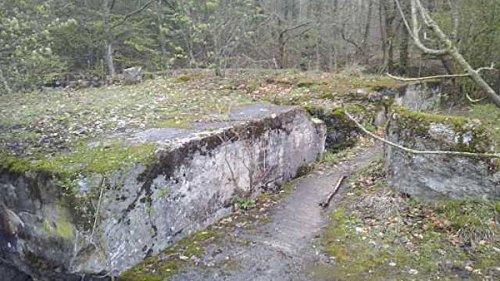 СМИ: в Польше нашли туннель, который может вести к Янтарной комнате