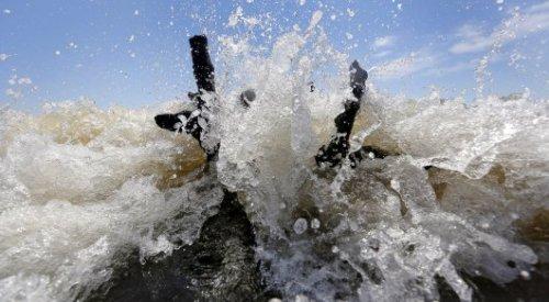 """В разрастающейся """"мертвой"""" зоне Мексиканского залива гибнет все живое"""