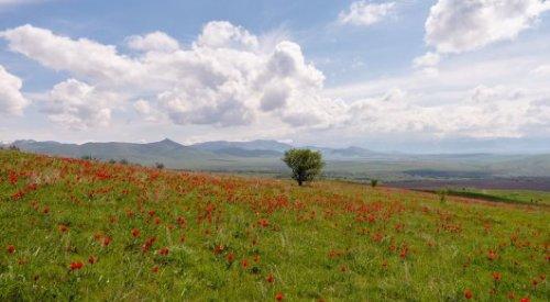 Министерство экологии, геологии и природных ресурсов создали в Казахстане