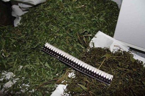 Крупную партию наркотиков изъяли у жителя Тараза в Алматинской области