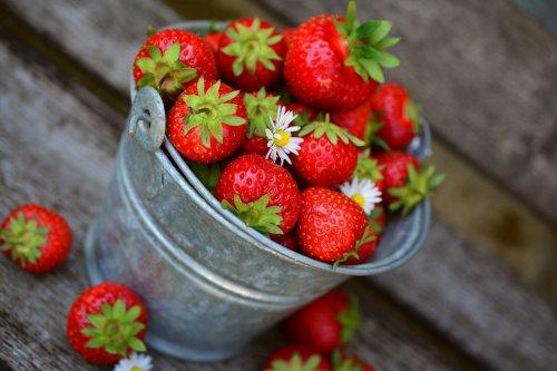 Доктор Комаровский рассказал, можно ли детям есть немытые ягоды