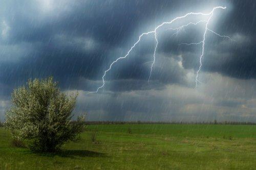 Дожди и грозы обещают казахстанцам 24 июня