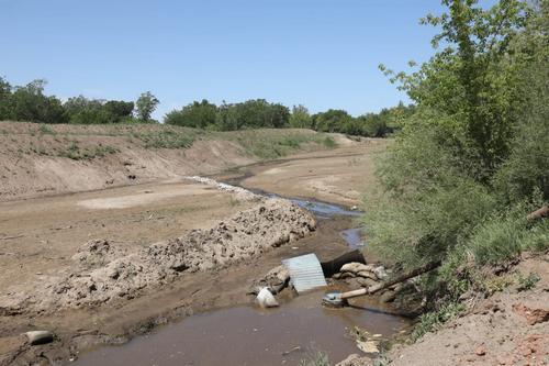 Реки в Актобе убили ради денег