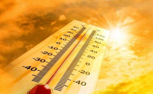Жара до 47 градусов ожидается в двух регионах Казахстана
