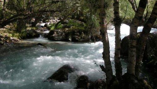 В реке Сайрам су погиб мужчина, который пытался спасти упавшего в воду сына