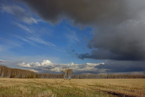 Какая погода ожидается в Казахстане 10 июля рассказали синоптики