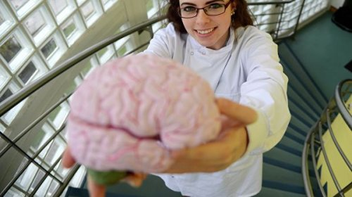 Ученые рассказали, как защитить мозг от возрастных разрушений