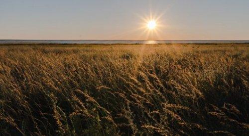 Сильная жара вернется в Казахстан