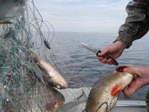 Токаев поручил пресечь деятельность браконьерской ОПГ на озере Маркаколь