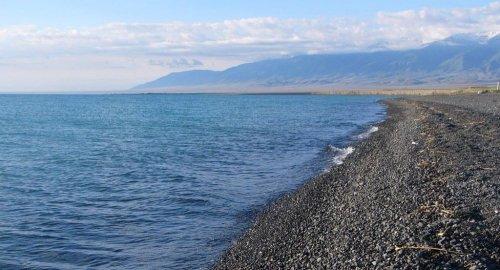 Слив в Алаколь: в пробах воды обнаружено превышение вредных веществ