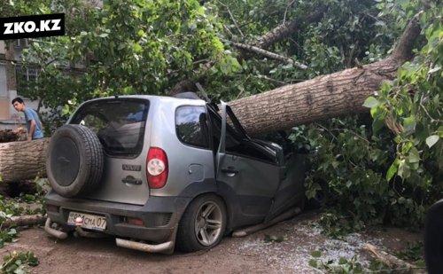 Аким ЗКО сообщил о чрезвычайной ситуации в области