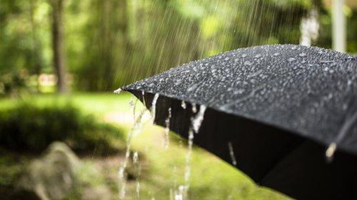 Неустойчивый характер погоды сохраняется 16 августа на большей части Казахстана