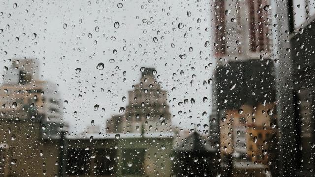 Дожди обещают синоптики  казахстанцам  21 августа