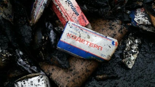 В Шымкенте частная компания сжигала человеческие органы и медицинские отходы прямо на улице