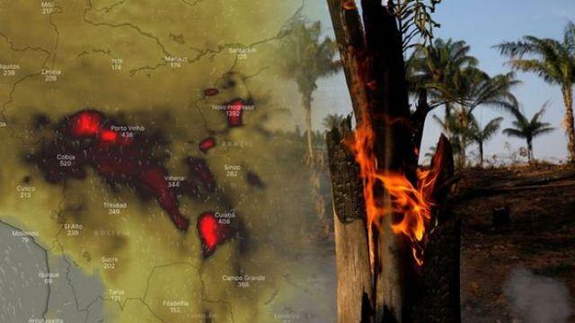 """Горящие """"легкие планеты"""". Чем грозят человечеству лесные пожары в Амазонии"""