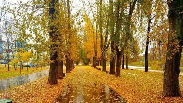 Синоптики дали прогноз погоды на сентябрь в Казахстане