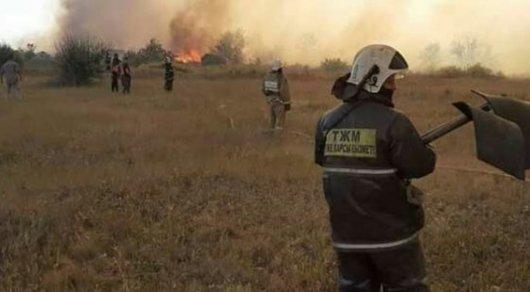 Крупный пожар в Темиртау: сгорели более 700 дачных домов