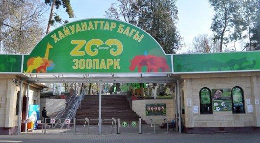 Жители Алматы желают закрыть зоопарк